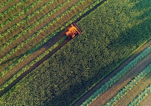 FECAP promove webinar sobre panorama geral do agronegócio brasileiro