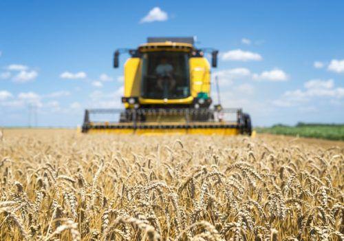 Comércio é o que moverá o novo agronegócio